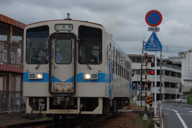IMGP0491.JPG